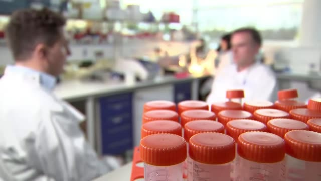 glasgow university researchers on threshold of being able to prevent spread of zika virus; scotland: glasgow: university of glasgow: int scientists... - virus zika video stock e b–roll
