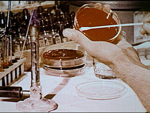 vídeos y material grabado en eventos de stock de / glass being swabbed and tested in petri dish man checking windows men at a cow corral - petri dish