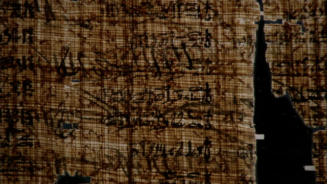 a glass case displays a large papyrus fragment. - arte dell'antichità video stock e b–roll