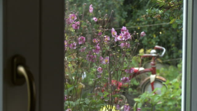 glass door shot looking into a garden with a bike - tricycle stock videos & royalty-free footage