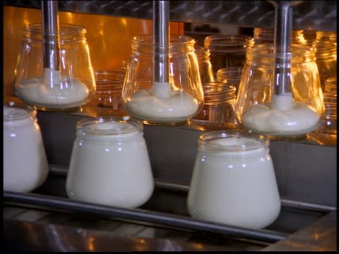 Glass jars being filled with mayonnaise in factory / Brazil