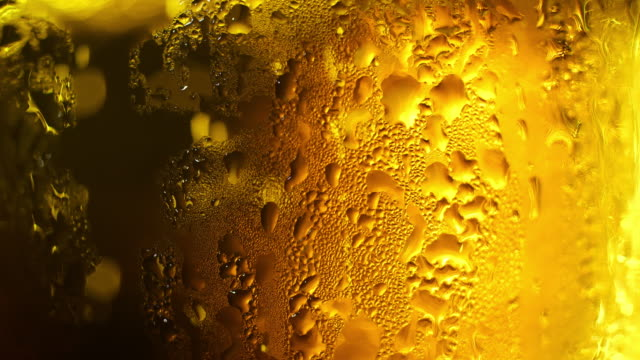 glass of beer close up - beer glass stock videos & royalty-free footage