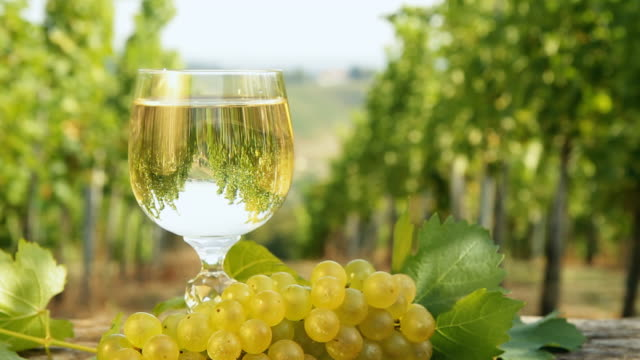 hd dolly: glass of wine against vineyard - grape stock videos & royalty-free footage