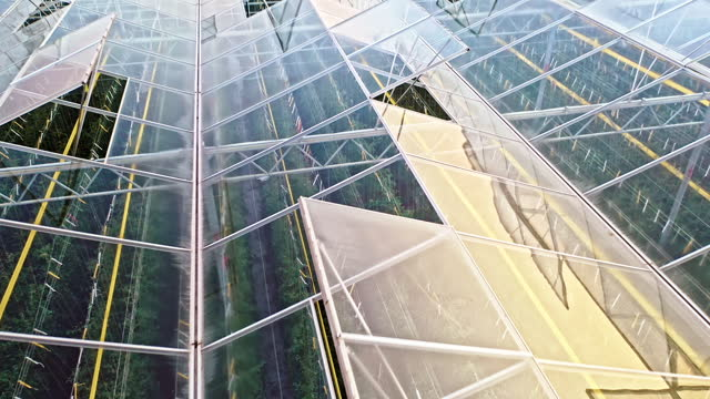 aerial glass rooftop of a greenhouse - greenhouse stock videos & royalty-free footage