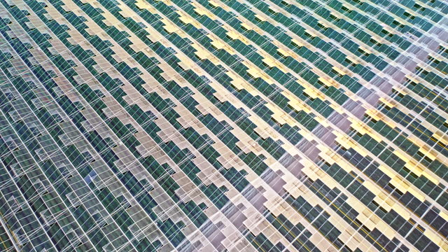 aerial glass rooftop of a large tomato greenhouse - helicopter point of view stock videos & royalty-free footage