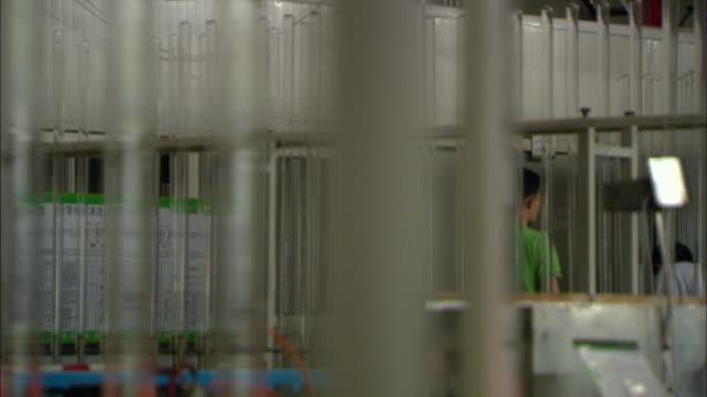vídeos y material grabado en eventos de stock de cu r/f glass tubes hanging from conveyor belt, workers in background, himin solar energy group factory, dezhou, shandong, china - paleta herramientas industriales