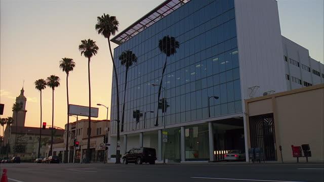 vídeos de stock e filmes b-roll de glazed office building, los angeles - fan palm tree