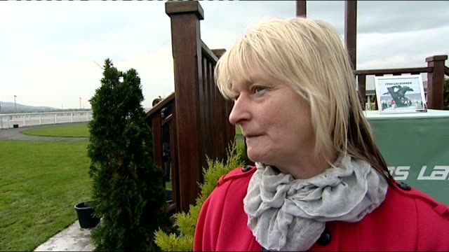 widows of two of men killed speak of kindness by others lynette powell interview sot close up of hands sorting out cheques sent to swansea valley... - widow stock videos and b-roll footage