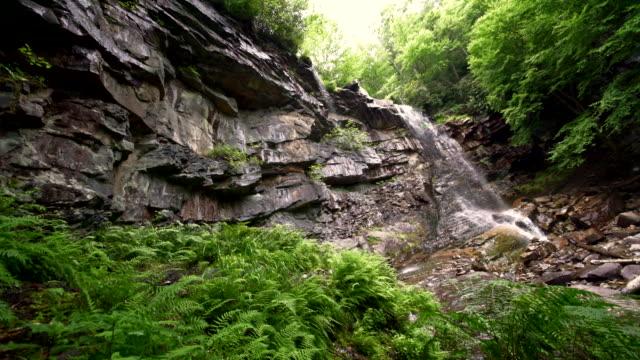 Glen Onoko fällt in den Lehighton State Park in der Nähe von Jim Thorpe. Pennsylvania, USA.