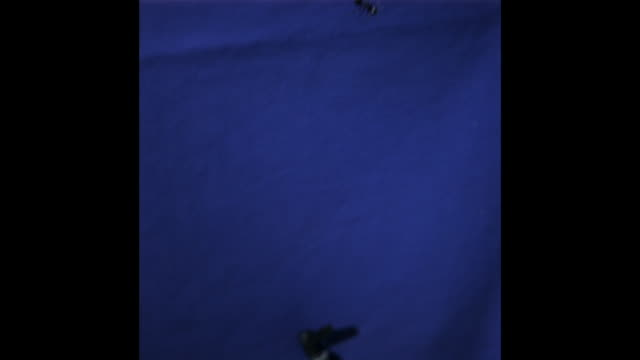 stockvideo's en b-roll-footage met a gliding ant falls in front of a bluescreen. available in hd. - zwaartekrachtsveld