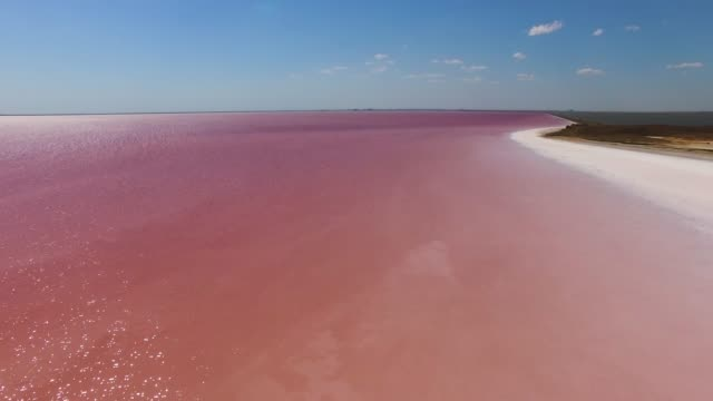 AERIAL: Glittering water surface of red salt lake