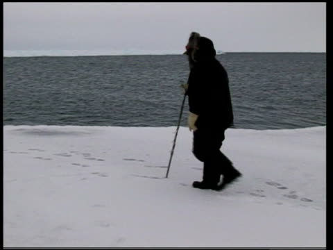 arctic ice melts; file / tx 21.9.99 arctic: ext polar bear jumping on melting ice floe file / tx 9.5.05 canada: nunavut: baffin island: inuit hunter... - inuit bildbanksvideor och videomaterial från bakom kulisserna
