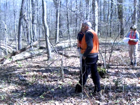 Global warming could be good news after all according to environmental researchers in Maryland If you're a tree that is Maryland Annapolis United...