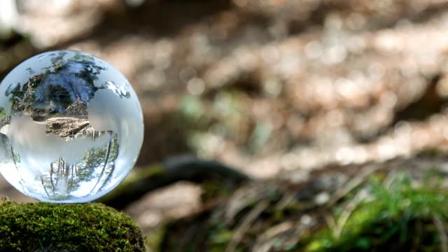 Globe rusten In een Forest