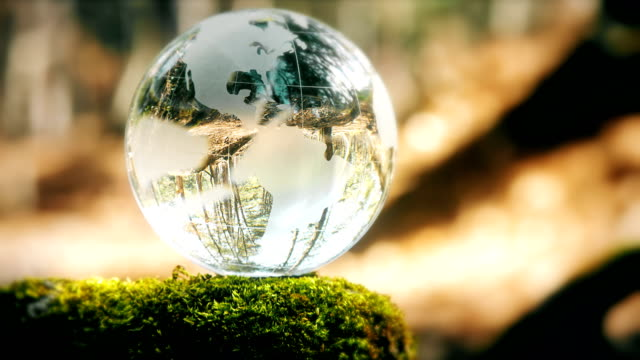 globe resting in a forest - fantasy stock videos & royalty-free footage