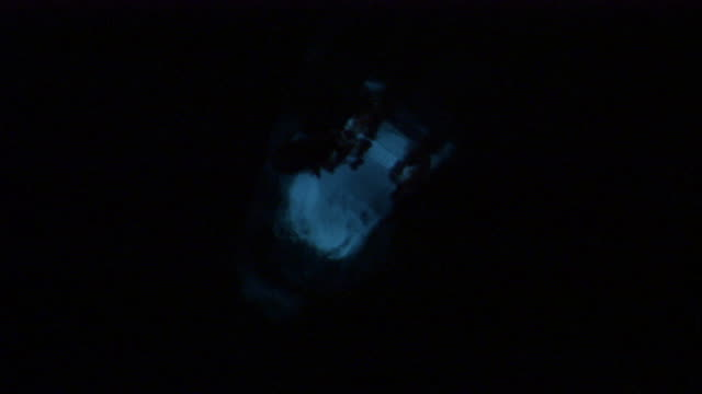 A glow worm crawls through a cave. Available in HD.