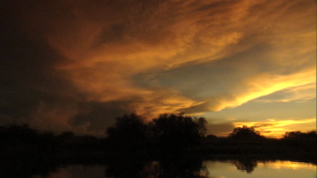 a glowing clouded sky reflects on the calm zambezi river during the golden hour. - golden hour stock videos & royalty-free footage