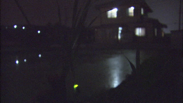 glowing luciola cruciata on waving plant at night with illuminated house in background, aichi, japan - 蛍点の映像素材/bロール