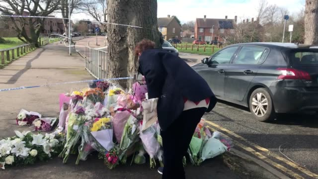 glynis green lays flowers next to a police cordon outside a park in romford where jodie chesney was fatally stabbed on friday evening - 刺傷事件点の映像素材/bロール