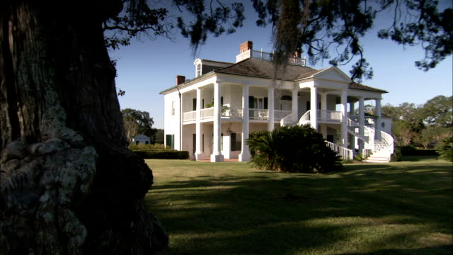 A gnarled tree stands in front of the Evergreen Plantation house. Available in HD.