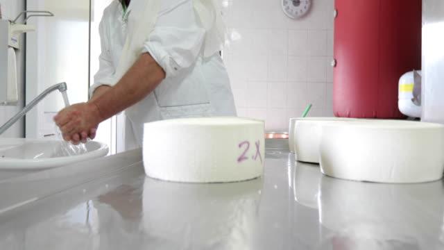 ヤギのチーズ農家はチーズに触れる前に手を洗う - シェーブルチーズ点の映像素材/bロール