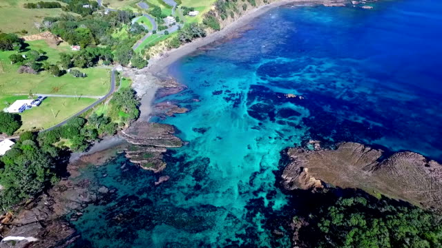 goat island - bay of islands new zealand stock videos & royalty-free footage