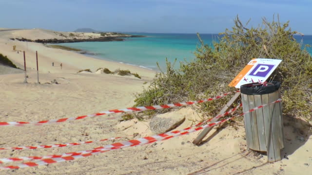 vídeos de stock e filmes b-roll de goats crossing the empty corralejo beach. canary islands is one of the most touristic places in spain as a measure to prevent the spread of the new... - gran canaria