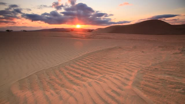 Gobi Desert at sunset