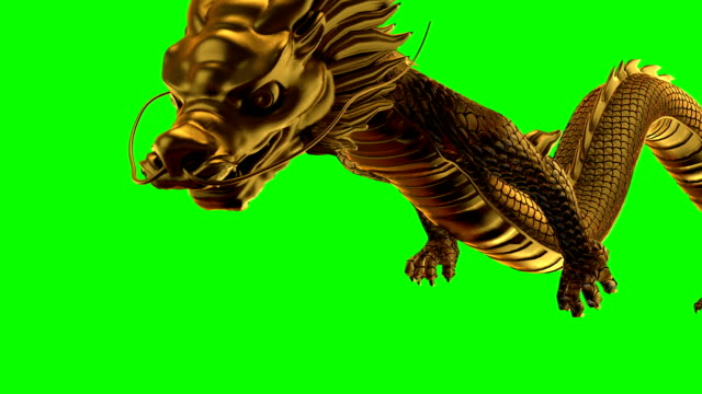 gold dragon fly left and right green screen - dragon stock videos & royalty-free footage