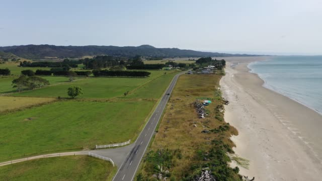 golden bay in puponga, south island, new zealand a5/5 - tall high stock videos & royalty-free footage