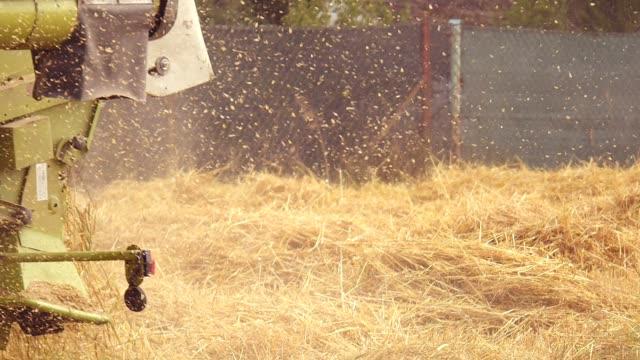 ゴールデンフィールドハーベスト - 干し草点の映像素材/bロール