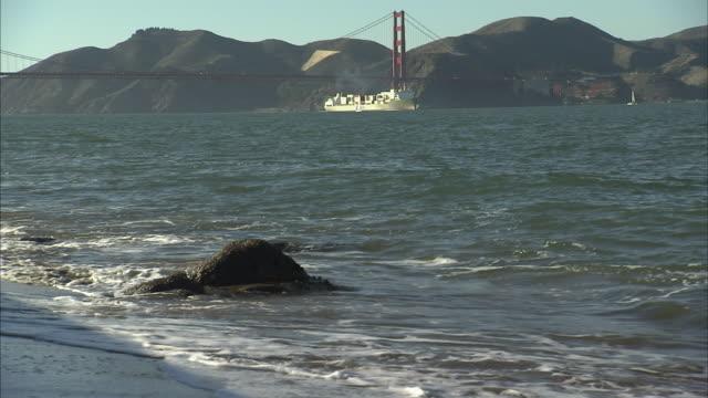 Golden Gate Bridge San Francisco Bay Marin Headlands