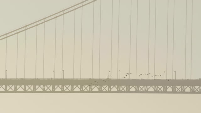 golden gate bridge - atmosphere filter stock-videos und b-roll-filmmaterial