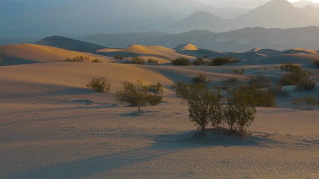 vidéos et rushes de golden light shines on sand dunes in death valley, ca - eco tourism