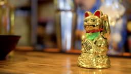 Golden lucky maneki neko on bar counter in Korean restaurant