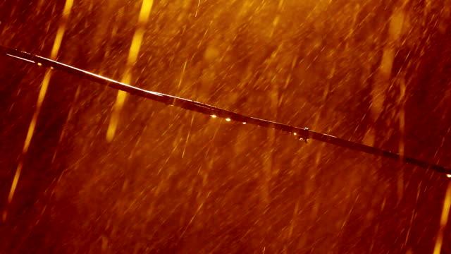 Golden Regen