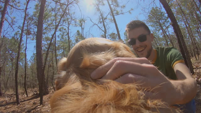 slo mo. a golden retriever is pet by his male owner in a forest. - stroking stock videos & royalty-free footage