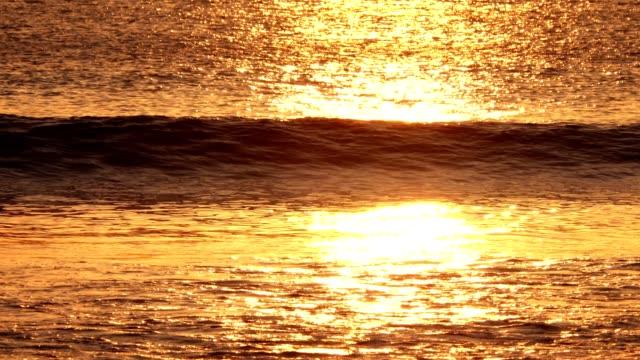 vidéos et rushes de mer d'or - orange