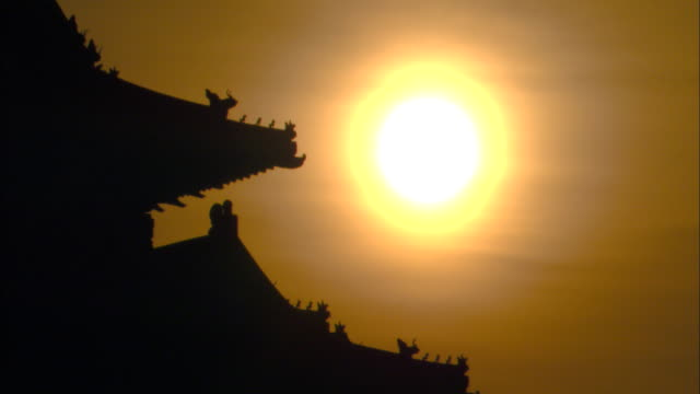 a golden sun silhouettes birds on a palace rooftop in the forbidden city. - forbidden city stock videos & royalty-free footage