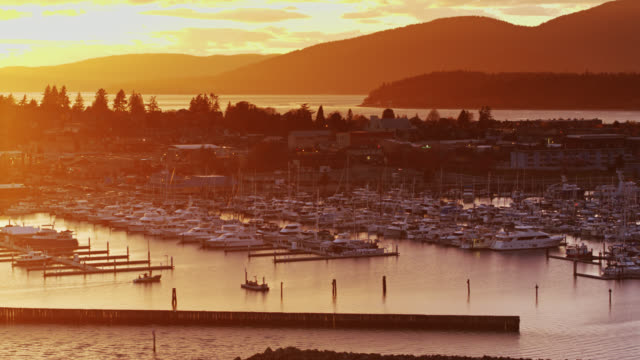 golden sunset on boats in marina in anacortes, wa - aerial - anacortes stock videos & royalty-free footage