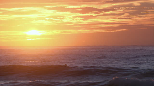 ws golden sunset over surfers paddling in ocean waves / sydney , australia        - seascape stock videos & royalty-free footage