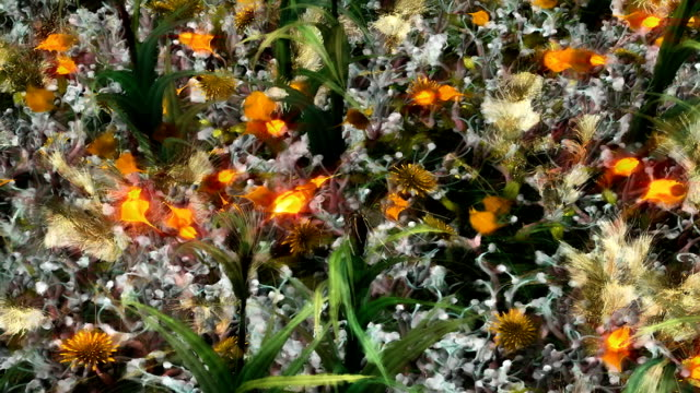 golden wildflowers sway in a gentle breeze. - impressionism stock videos & royalty-free footage