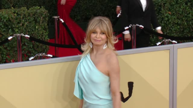 goldie hawn at the 24th annual screen actors guild awards at the shrine auditorium on january 21, 2018 in los angeles, california. - goldie hawn stock-videos und b-roll-filmmaterial