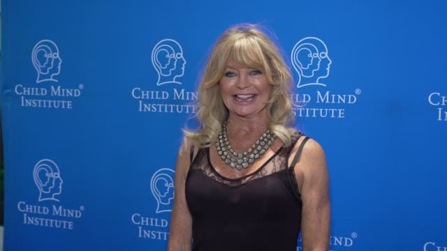 goldie hawn at the child mind institute's 2019 change maker awards at weill music room, carnegie hall on may 1, 2019 in new york city. - goldie hawn stock-videos und b-roll-filmmaterial