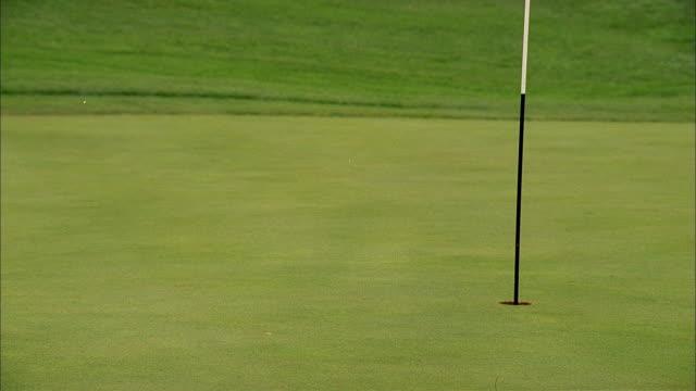 vídeos de stock, filmes e b-roll de a golf ball drops on a green and rolls into the hole. - bola de golfe