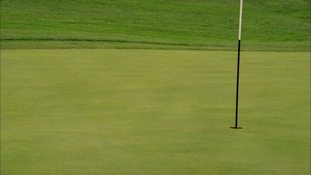 a golf ball drops on a putting green and rolls toward the hole. - putting green stock videos & royalty-free footage