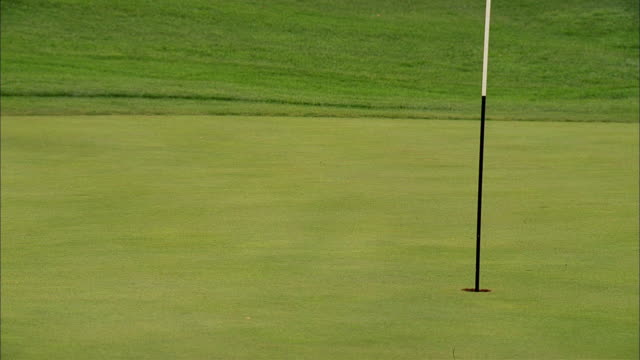 a golf ball hits the putting green and rolls close to the hole. - golf stock-videos und b-roll-filmmaterial