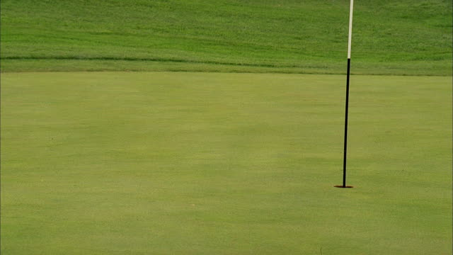 a golf ball lands on a putting green and stops short of the hole. - putting green stock videos & royalty-free footage