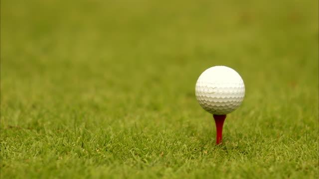 vidéos et rushes de a golf ball on a peg close-up sweden. - tee de golf