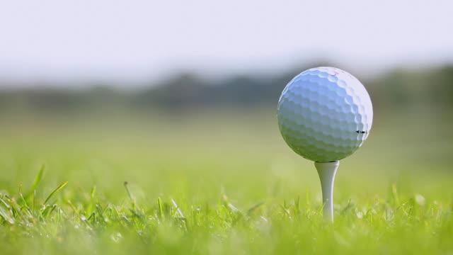 vidéos et rushes de ecu golf ball on tee / canterbury, kent, uk - tee de golf